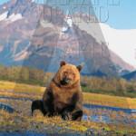 COVER_A_MAGAZINE-Rodarte-A11