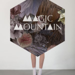 MagicMountain_AW11_HexagonLogoWithLegs_low