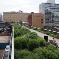 3. Einen Spaziergang auf der High Line machen (mein Lieblingsplatz!)