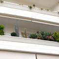 Balkon-Liebe!