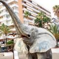 Gestatten, die Elefantendusche am Strand