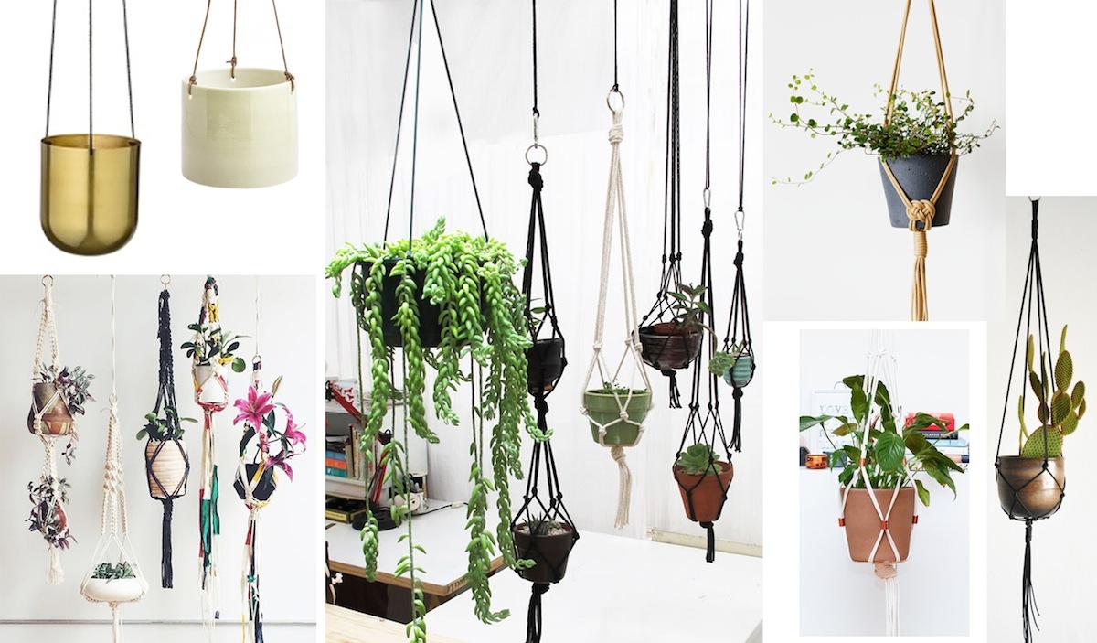 plant-hanger-design
