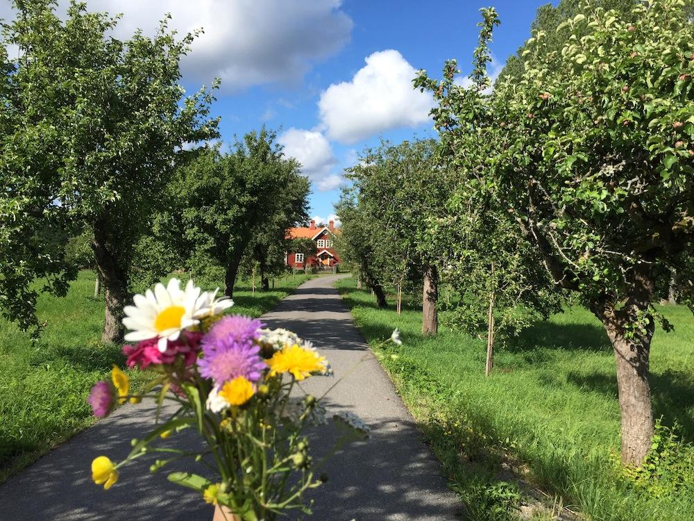 schweden-roadtrip-haus5