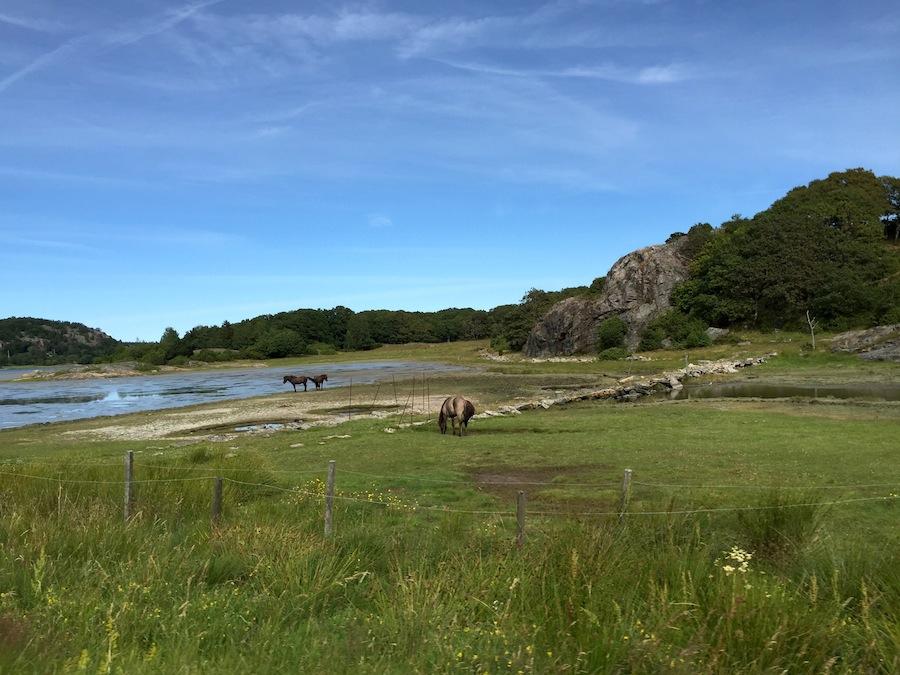 schweden-roadtrip-ontheroad