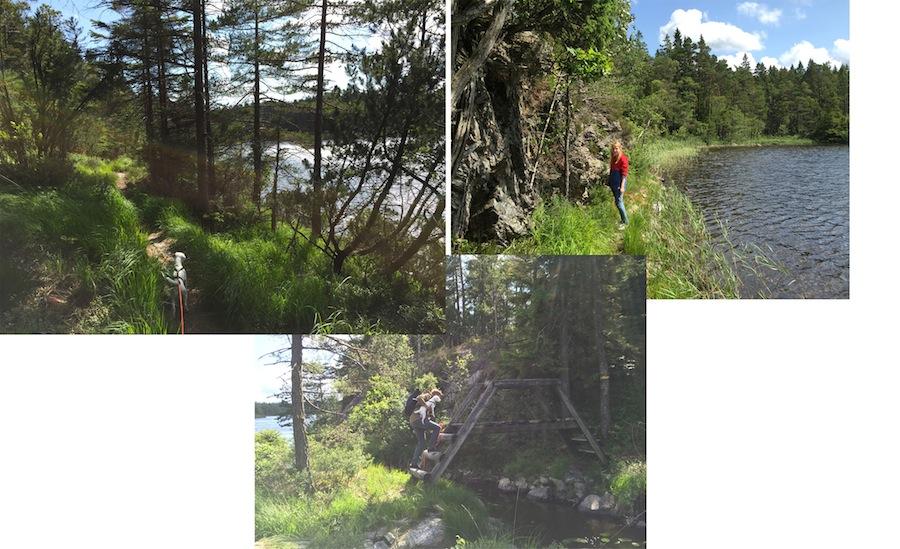 schweden-roadtrip-suzuki-wanderweg