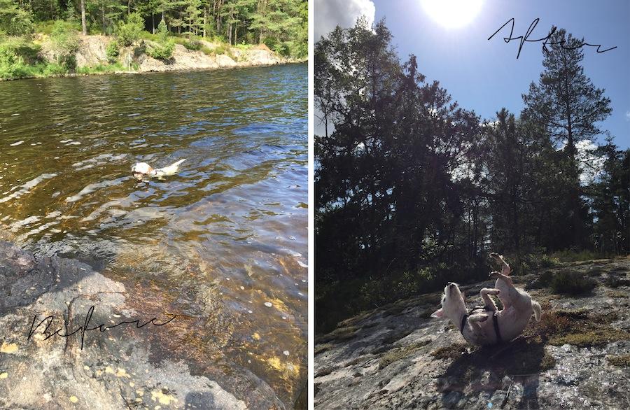 schweden-roadtrip-wandern-helle