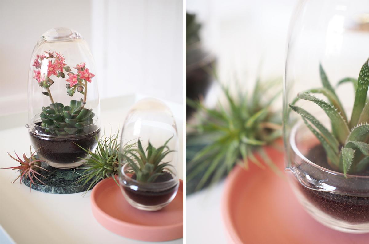gewaechshaeuser-designhousestockholm-grow